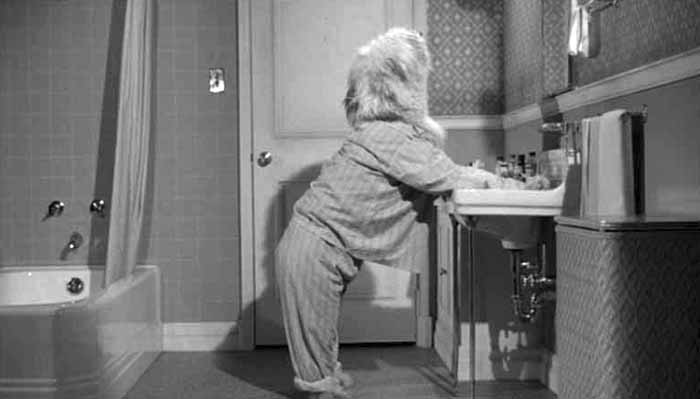 IMAGE(http://www.incredibletvandmovies.com/shaggy_dog_standing_at_sink.jpg)